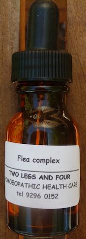 flea complex